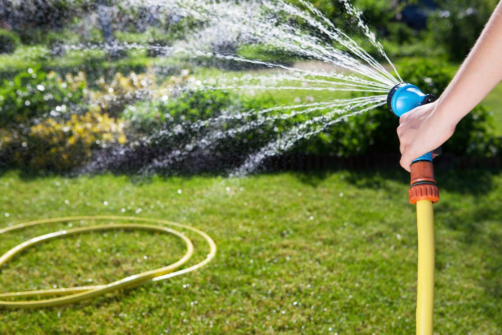 5 ways to keep your garden hydrated during a heatwave