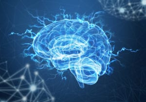 The brain as our most important sales tool